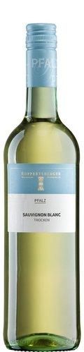 Sauvignon Blanc QW trocken Pfalz 2020